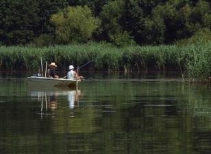 vissers01